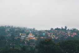 A foggy day in Coorg.