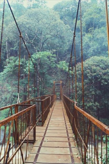 Hanging bridge to cross the falls